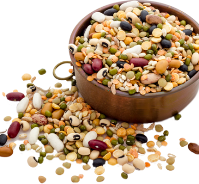 Pulses-Seed